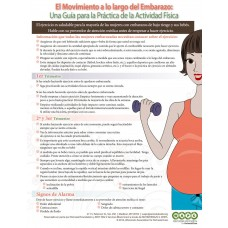 Moving through Pregnancy (Spanish) - FREE Download - see link in description below